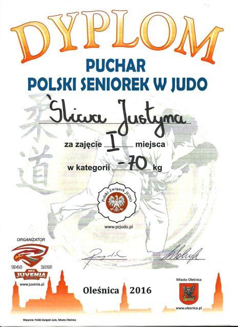 dyplom-j-sliwa-001